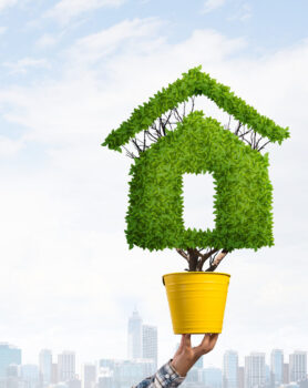 Balancing being eco-friendly with modern building design